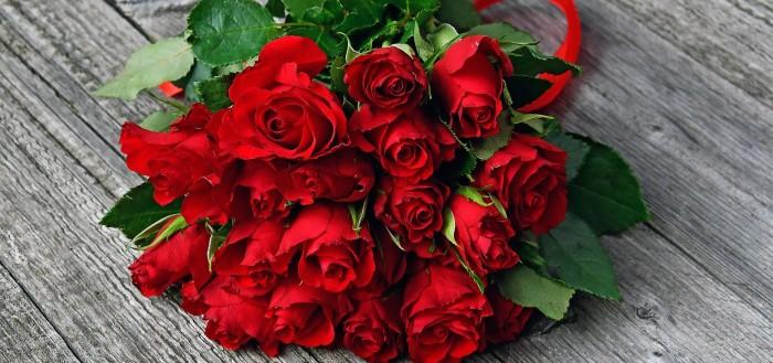 red-rose-3923289_1920